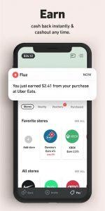 fluz app review